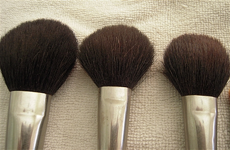 Dirty Blush Brushes