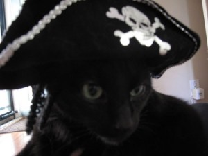 Gaby looking handsome in his Pirate hat.