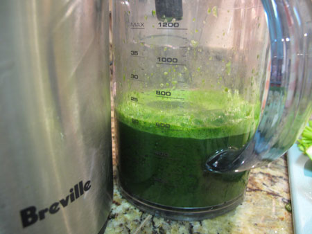 Spicy Healing Green Juice Recipe Greens